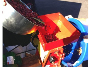 Как способ обработки кофе влияет на его вкус?